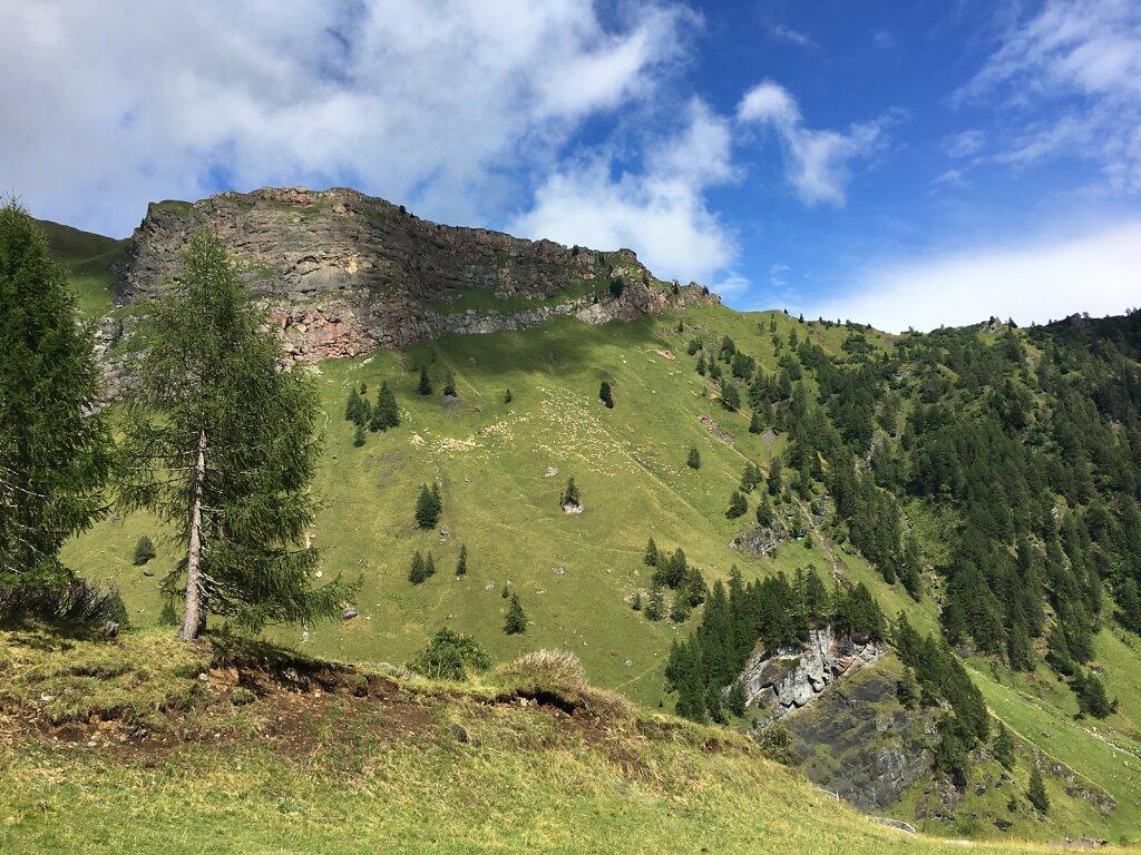 14.08.2018 Berge bedeckt von Schafen
