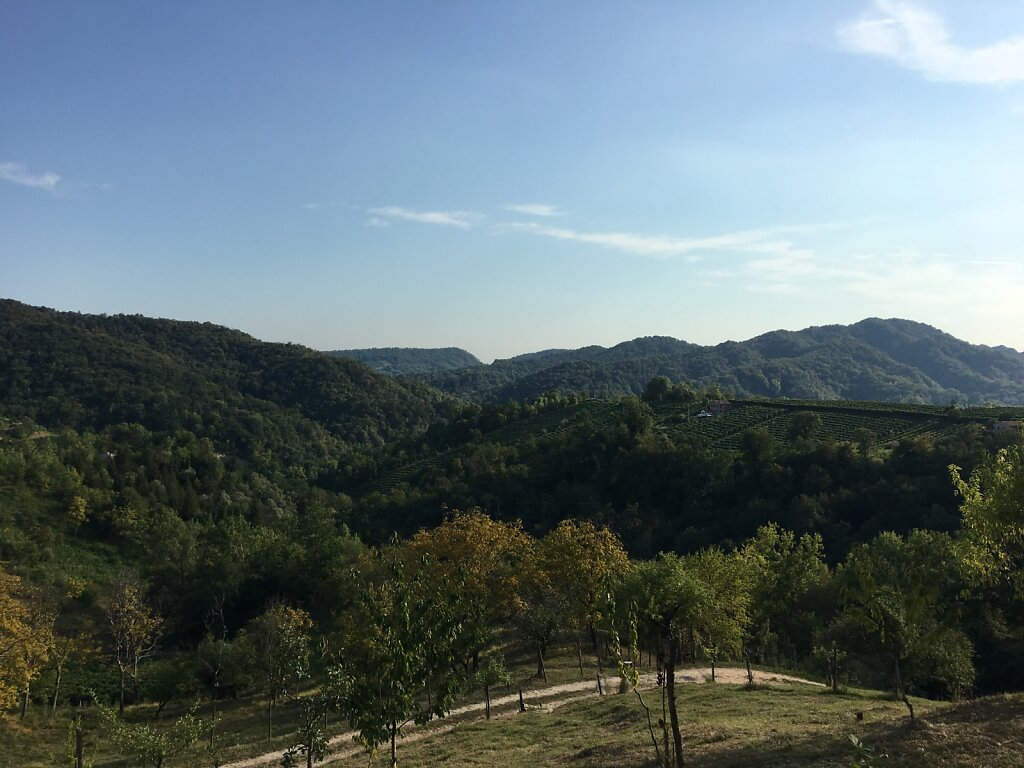 20.08.2018 Blick in die Prosecco-Berge