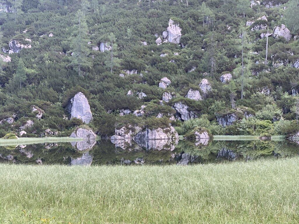 07.08.2021 Spiegelungen im Schwarzsee